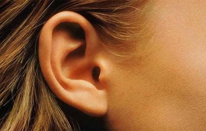 Hoe werkt het gehoor